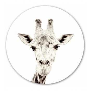 Groovy Magnets -Giraffe magneetsticker